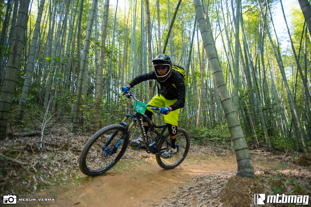 bamboo ride