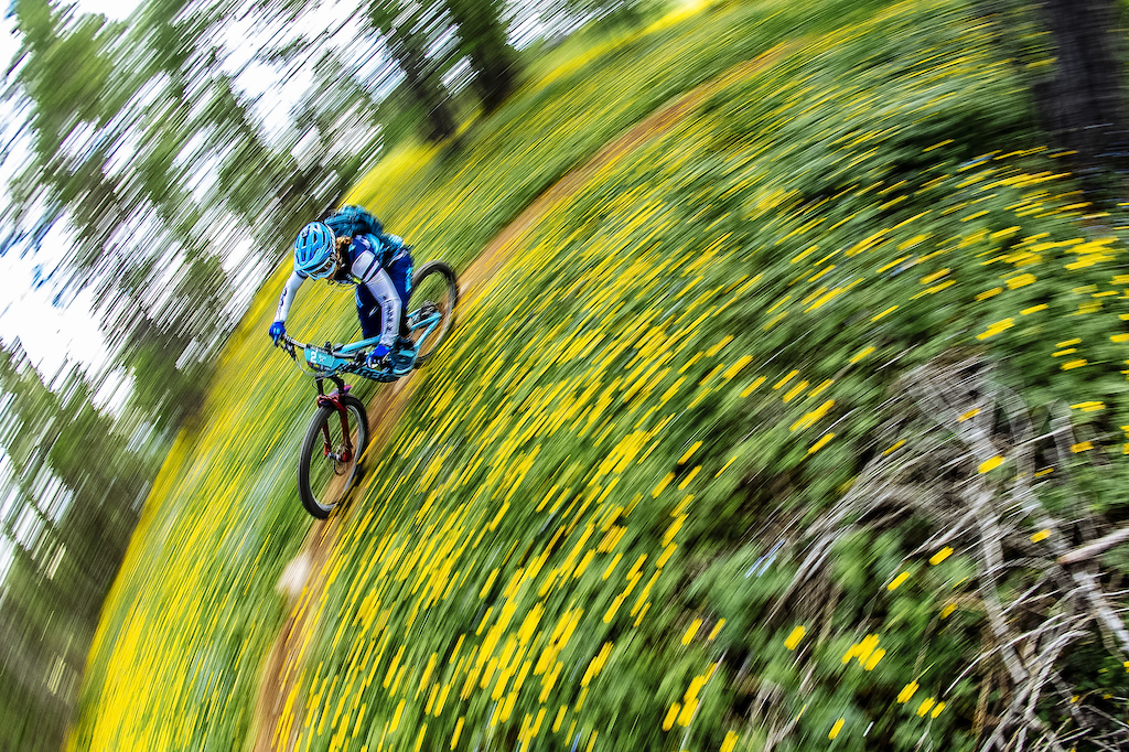 during the 2019 Mavic Transprovence the original alpine MTB rally.