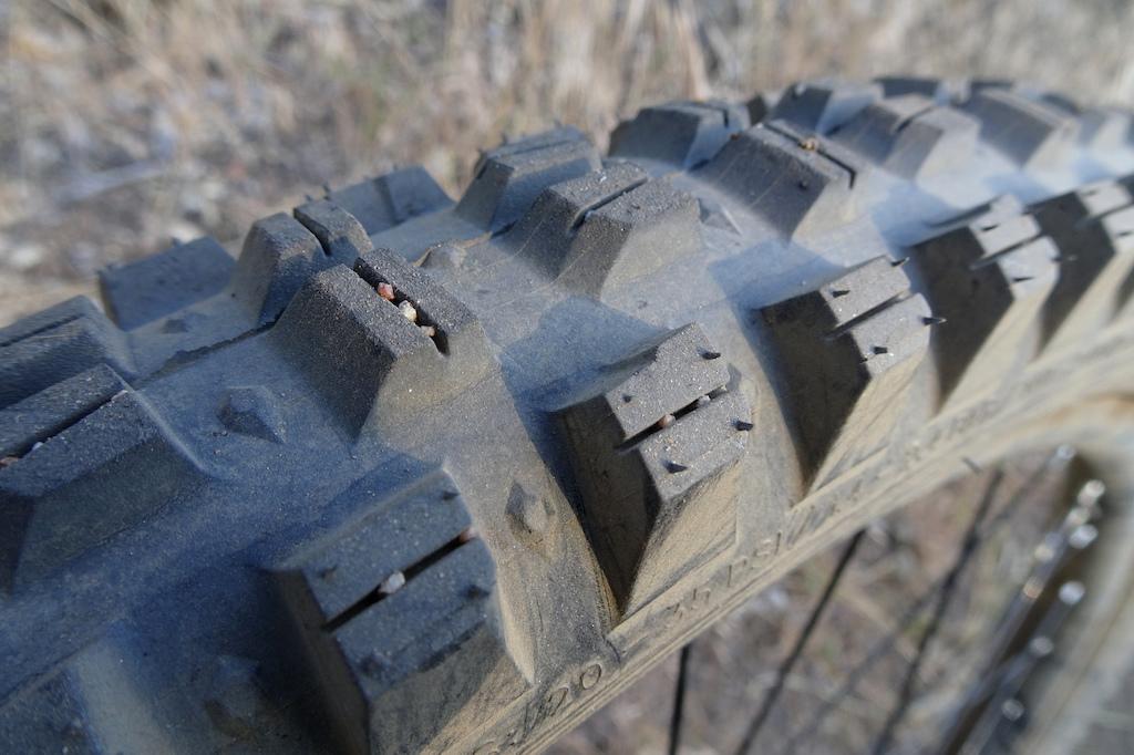 WTB tires Verdict and Judge