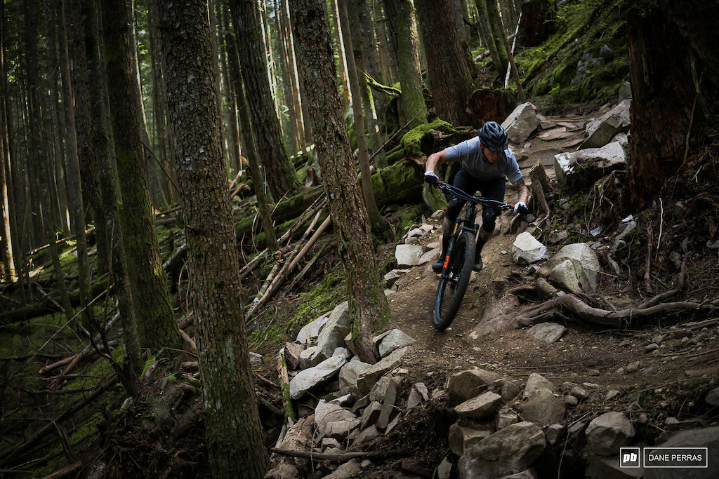 Ibis Ripley V4 review photo by Dane Perras.