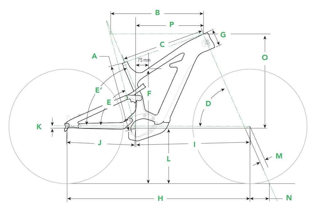Moterra Geometry Image