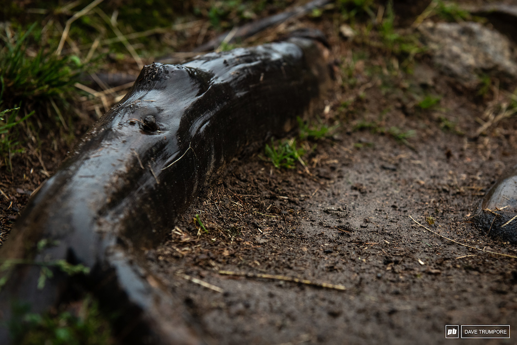 """Perhaps one of the the reasons the track has been nicknamed """"Black Snake"""""""