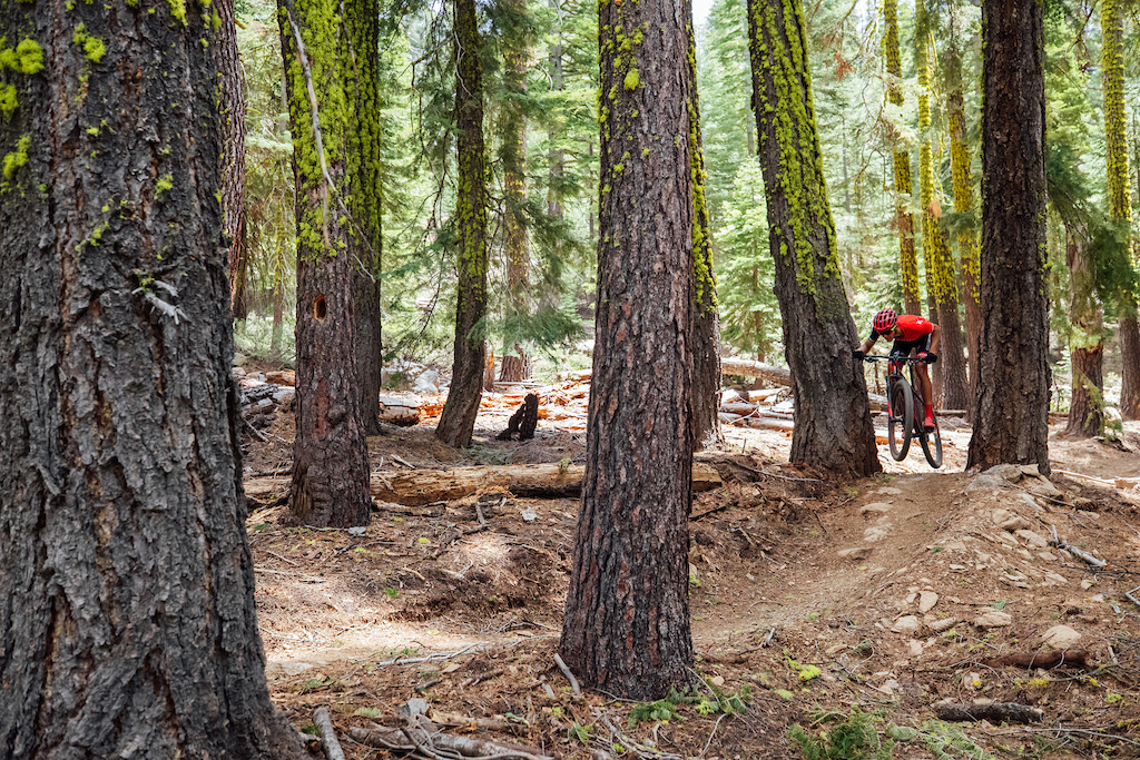 First Ride: 2020 Specialized Epic HT - The World's Lightest