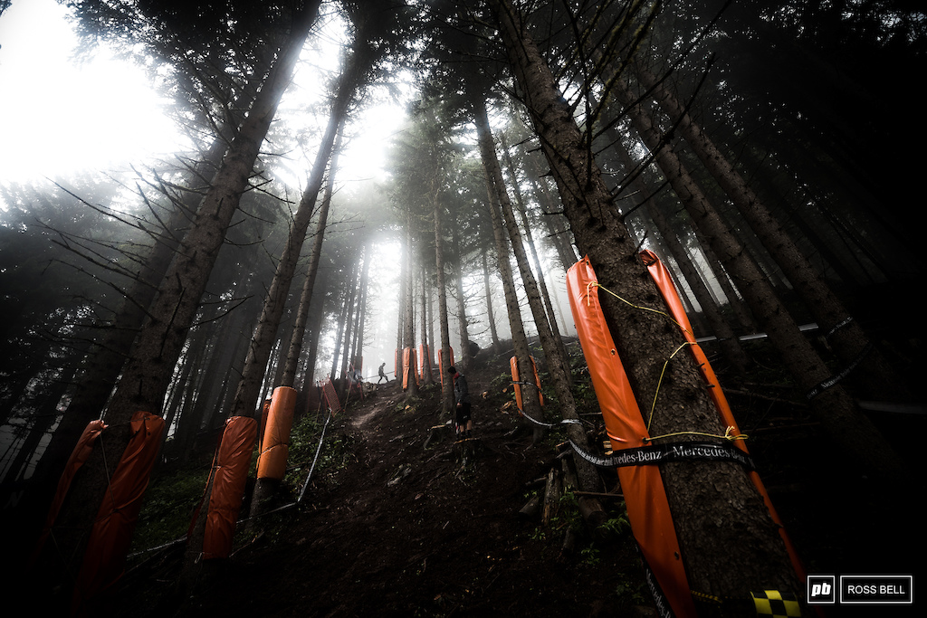 There's a fresh section in the woods which looks steep and super slick, it'll be carnage in there tomorrow morning.