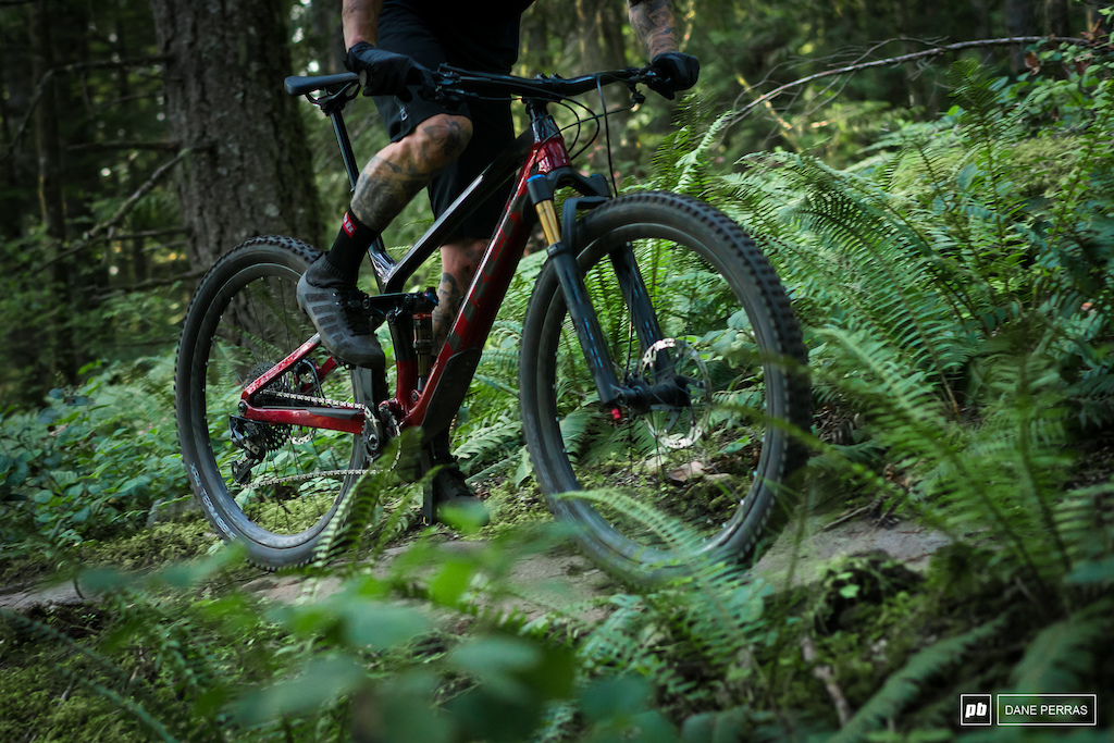 Trek Fuel EX 9.8 X01 Photo by Dane Perras