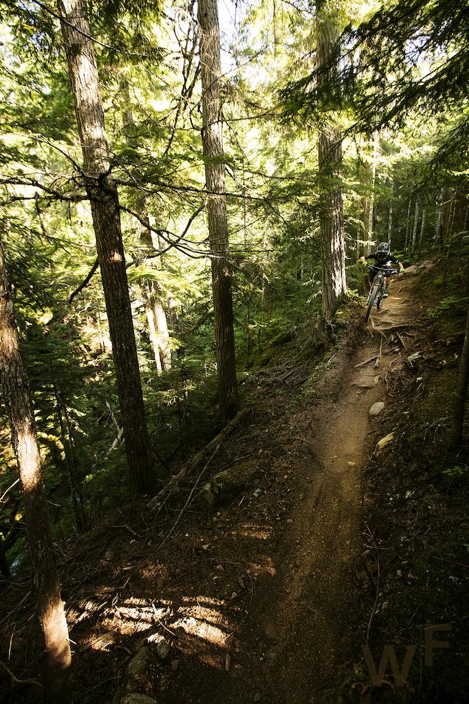 Whistler 2019 Brody Fox BC's trail.  Whistler BikePark