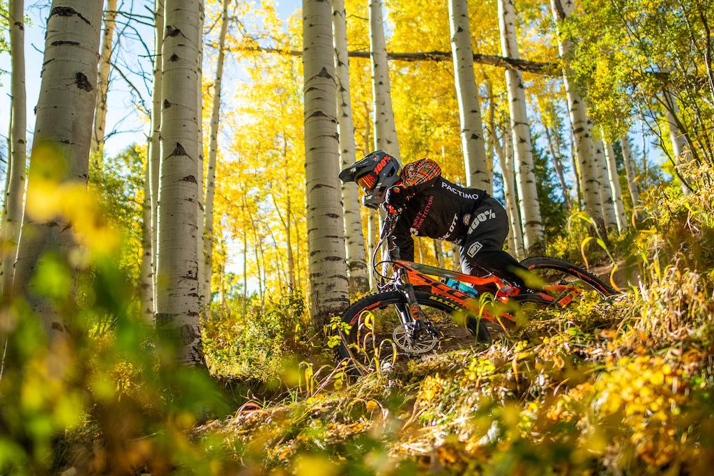 Wonderful fall colors were on plentiful display this weekend.