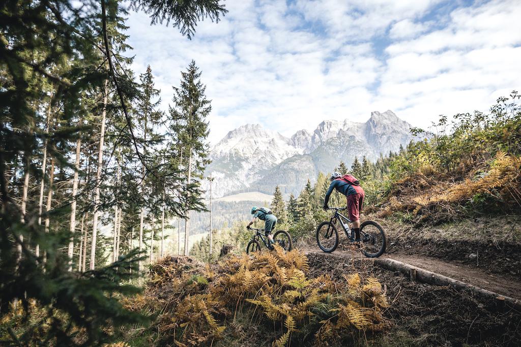 Neuer Trail Richtung Schwarzleobach
