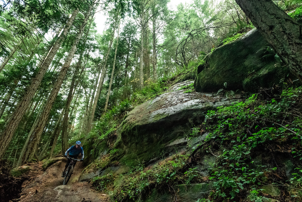 Enjoying some of Chuckanut s finest gnar. This sketchy section of bench cut trail keeps you focused. Photo credit OliverParish