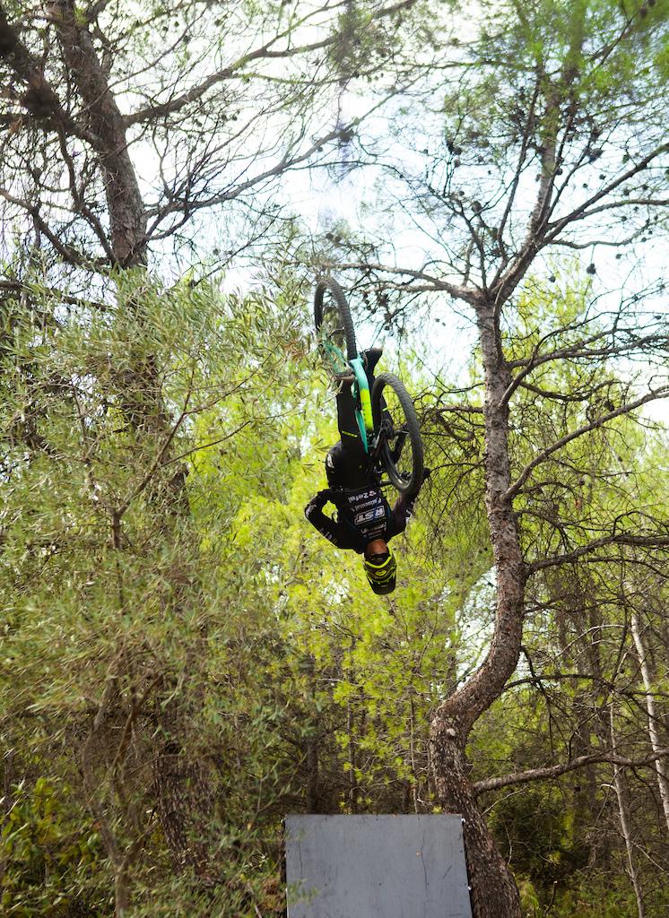 Backflip between two trees