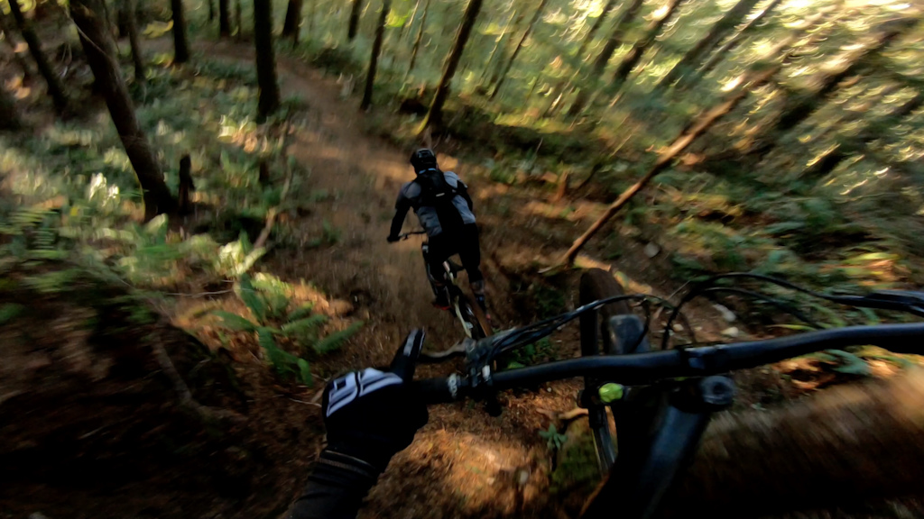 New Trail Preview