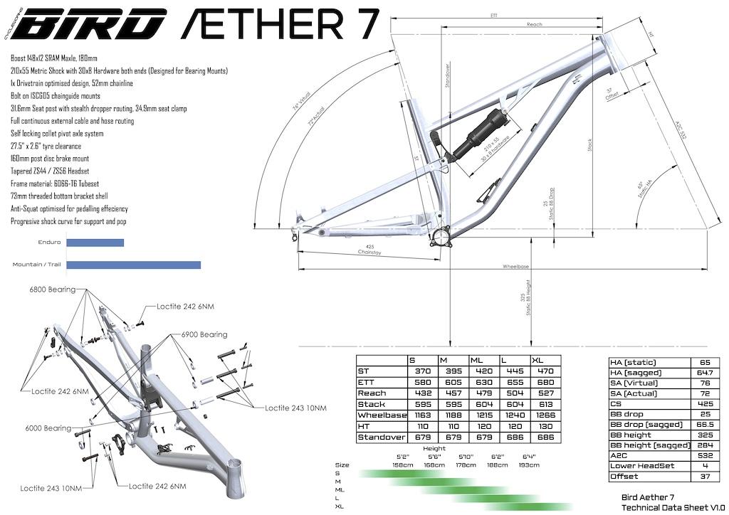 Bird Aether 7