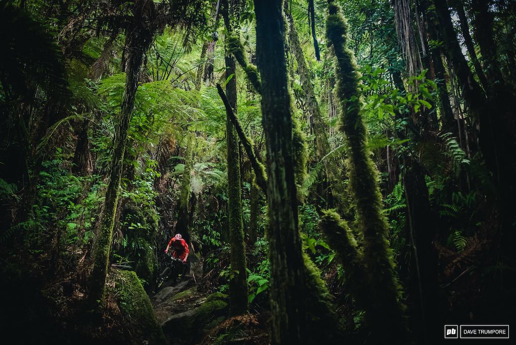 Jack Moir during the 2017 Enduro World Series in Rotorua, NZ