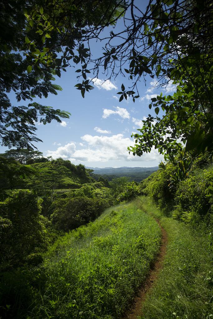 Brad Hager and Greg Randolph rides the Kuilau Trail in Kauai USA