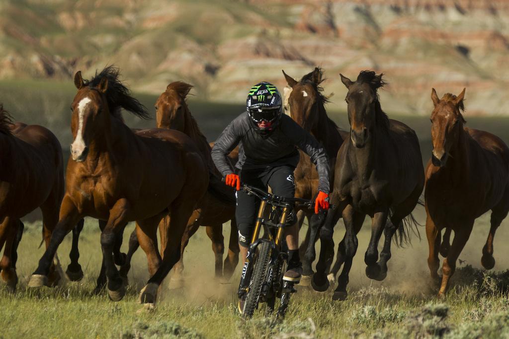 Brett Rheeder Wyoming