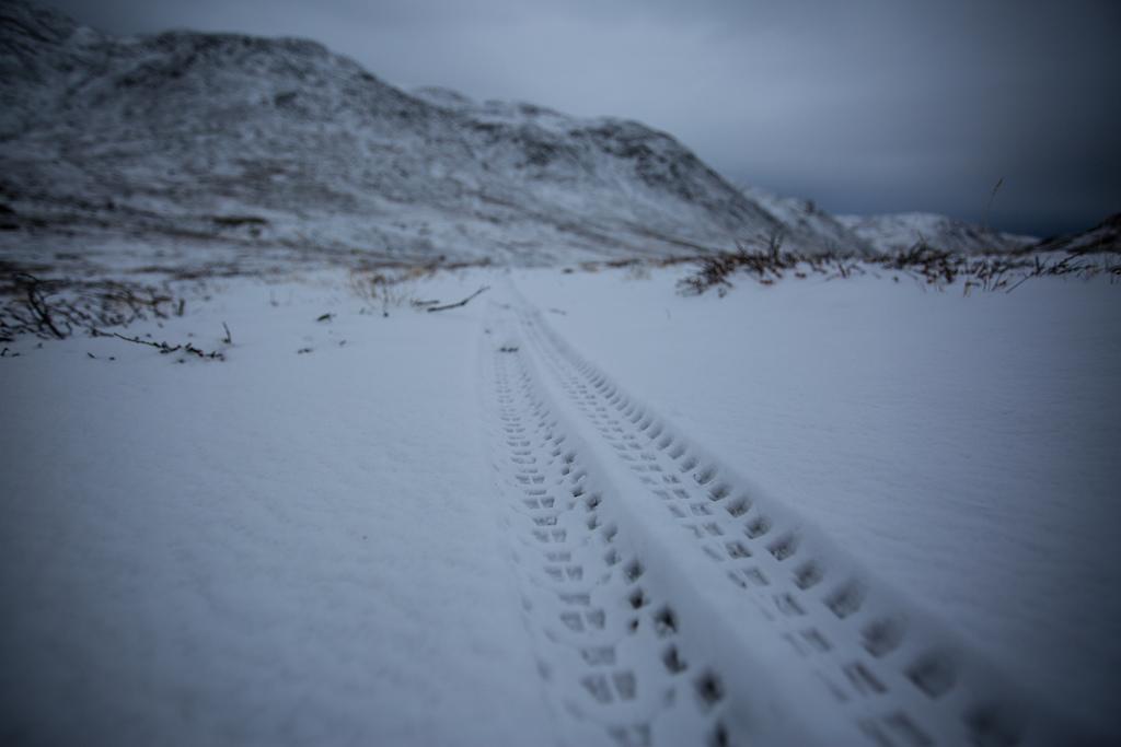 Tracks on the tundra