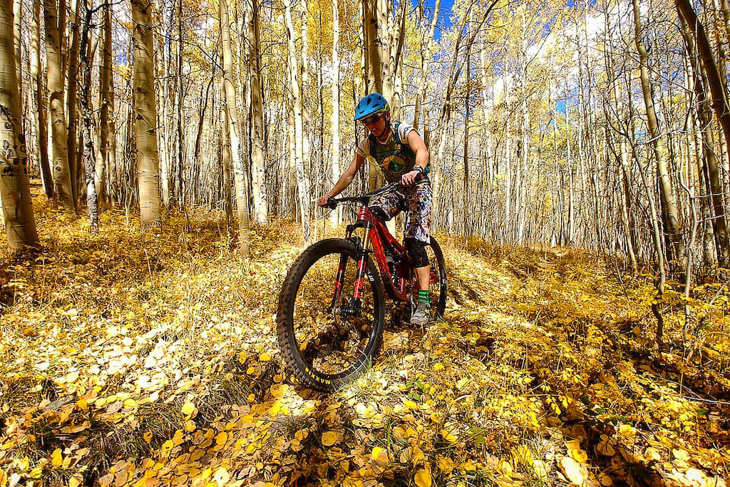Back to the Trails photos courtesy of Tom Runcy.