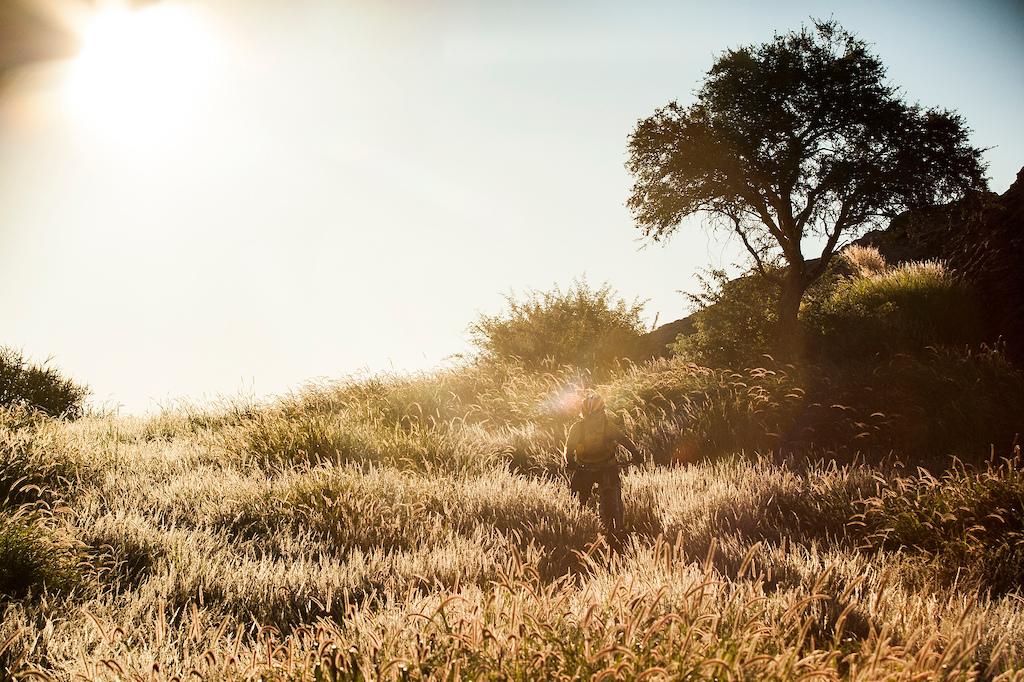 Adiridas African Safari Mashatu Botswana