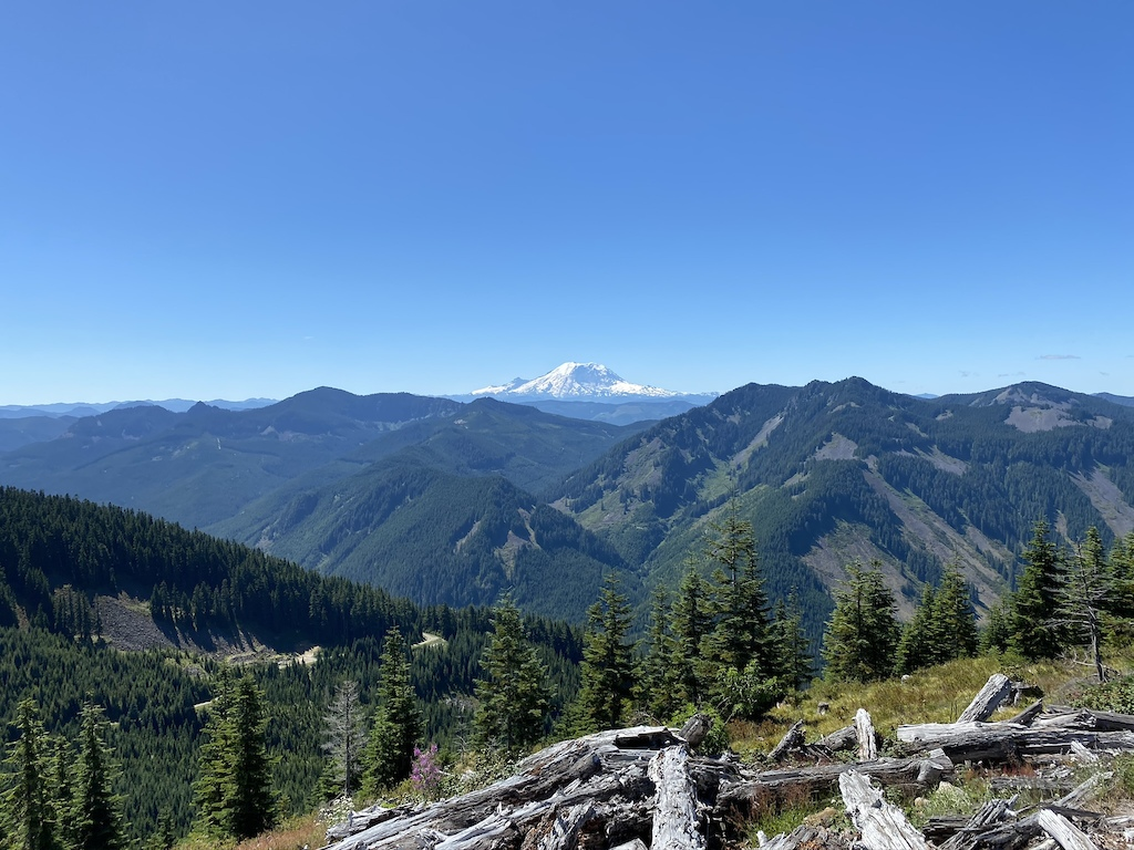 View of Mt Rainier from the viewpoint at the end of the Little Saint Helens trail (slightly below the true peak).
