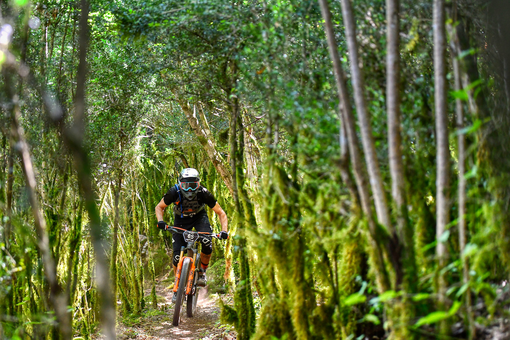 Although is summer and dry stage 5 seems like a trail from Madeira or any other humid place