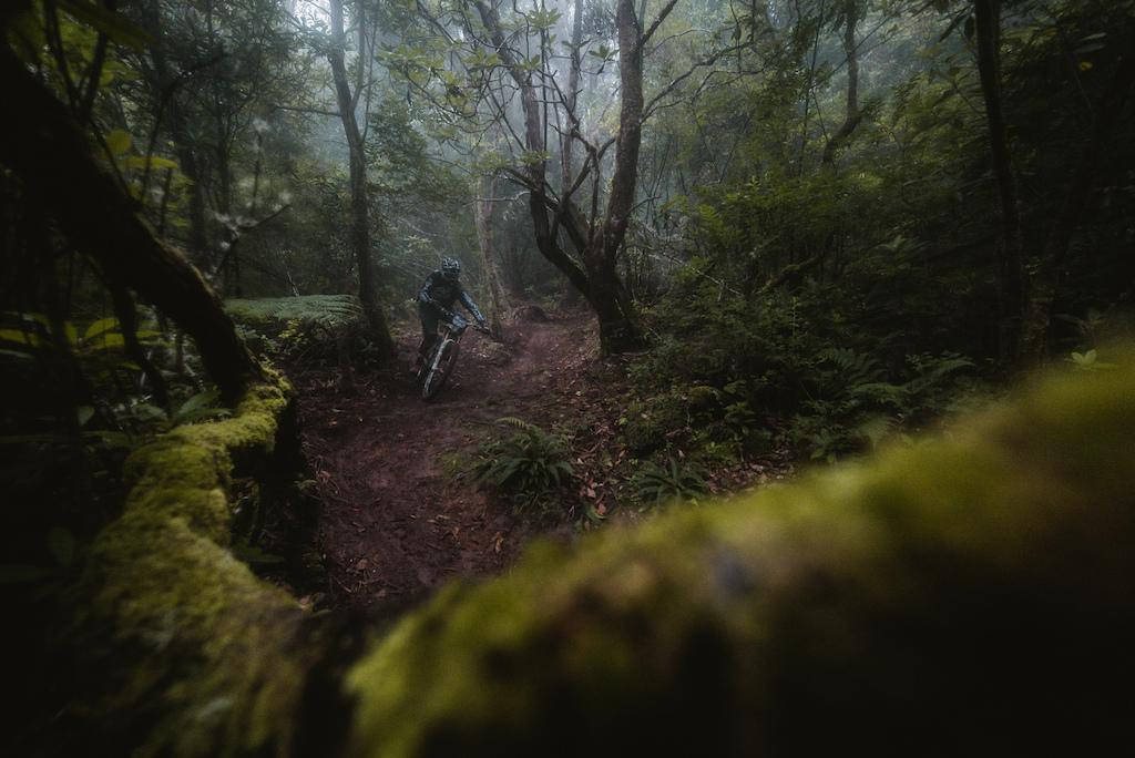 Trans Madeira 2020 - Day 4