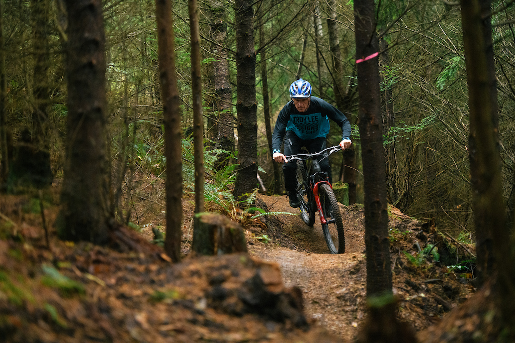 Pumping through the forest.
