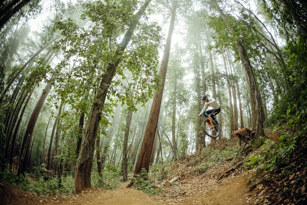 Warren Kniss staying true to his home town forest.