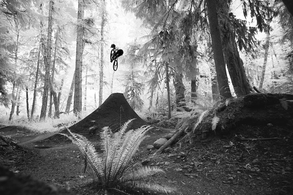 Noir - Dillon Butcher A Riders Rider
