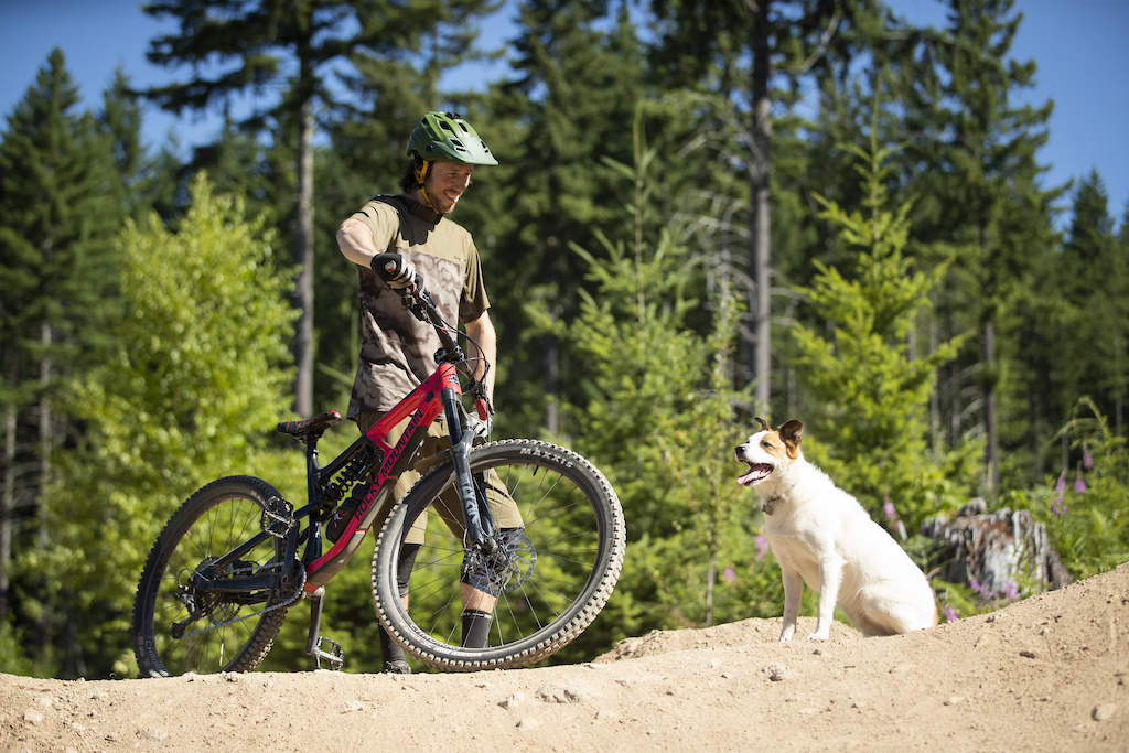 Shimano Dogs with Eric Lawrenuk and Levi in Squamish British Columbia Canada