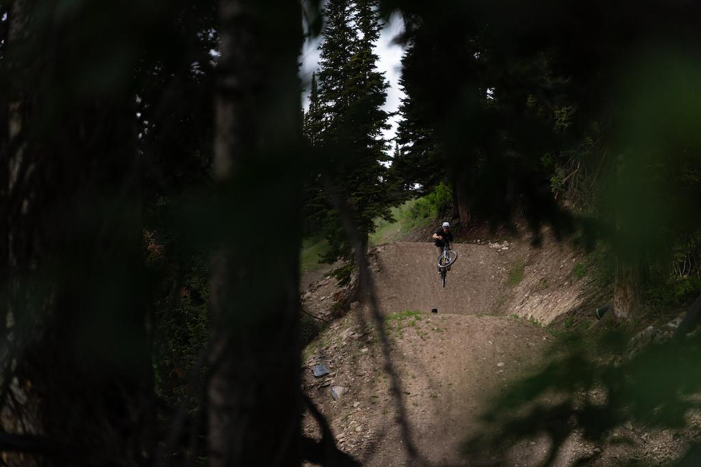 Deer Jumps double set.