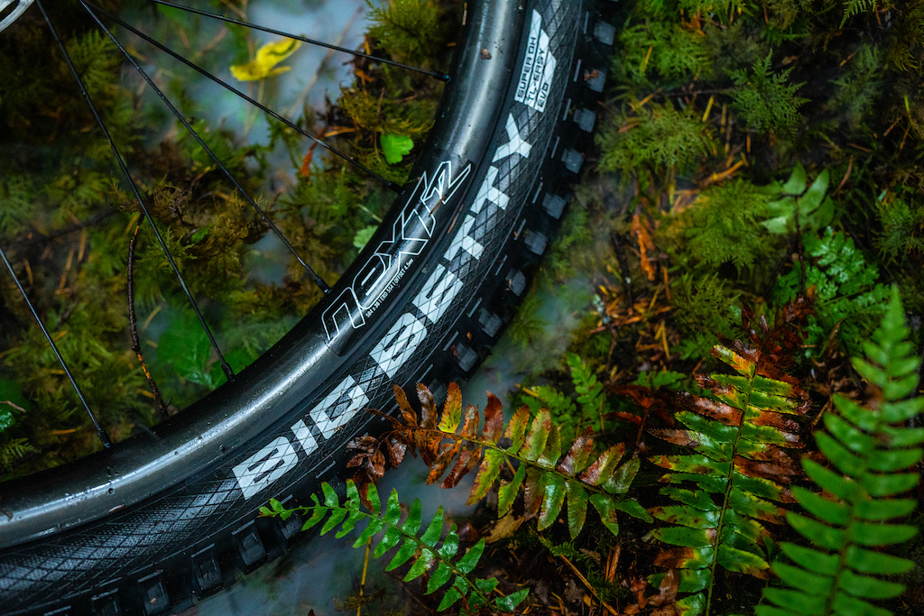 Micayla Gatto pushes the Schwalbe Big Betty to the limit on her beloved home trails in British Columbia.