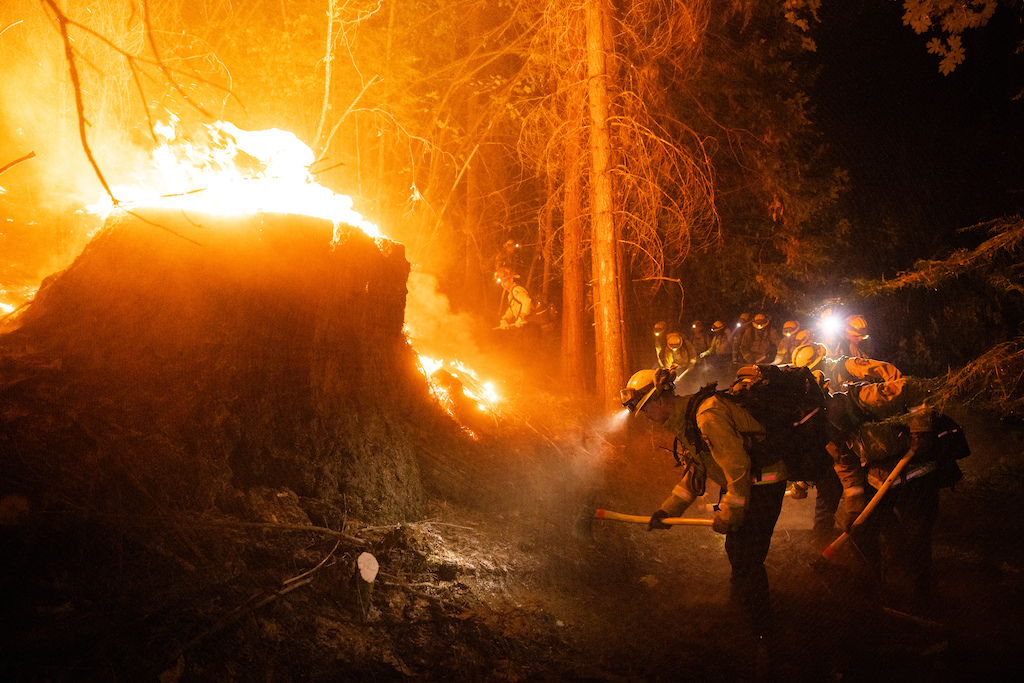 POLLOCK PINES CALIFORNIA - AUGUST 18 2021 A CalFire firefighters dig containment line on the Caldor Fire near Pollock Pines California on August 18 2021. The fire has burned more than 62 000 acres destroyed homes and prompted the evacuation of over 7 000 residents. CREDIT Max Whittaker for The New York Times