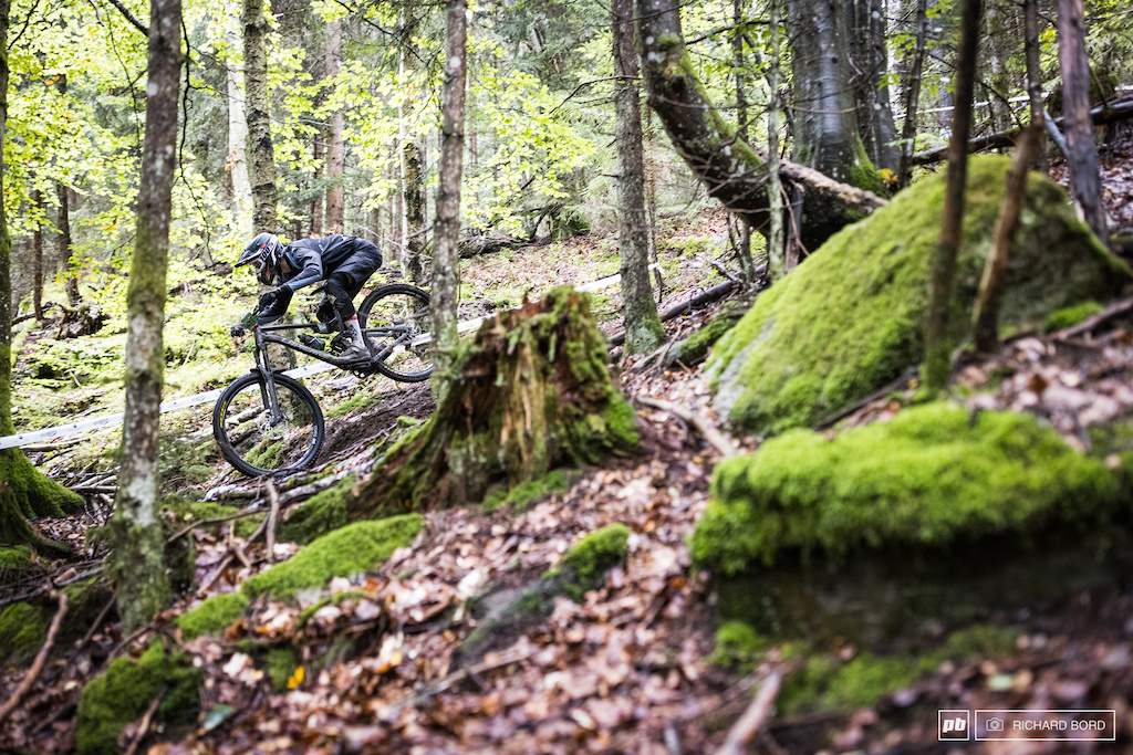 Some Juniors can be as fast as stylished even in the slippery woods.