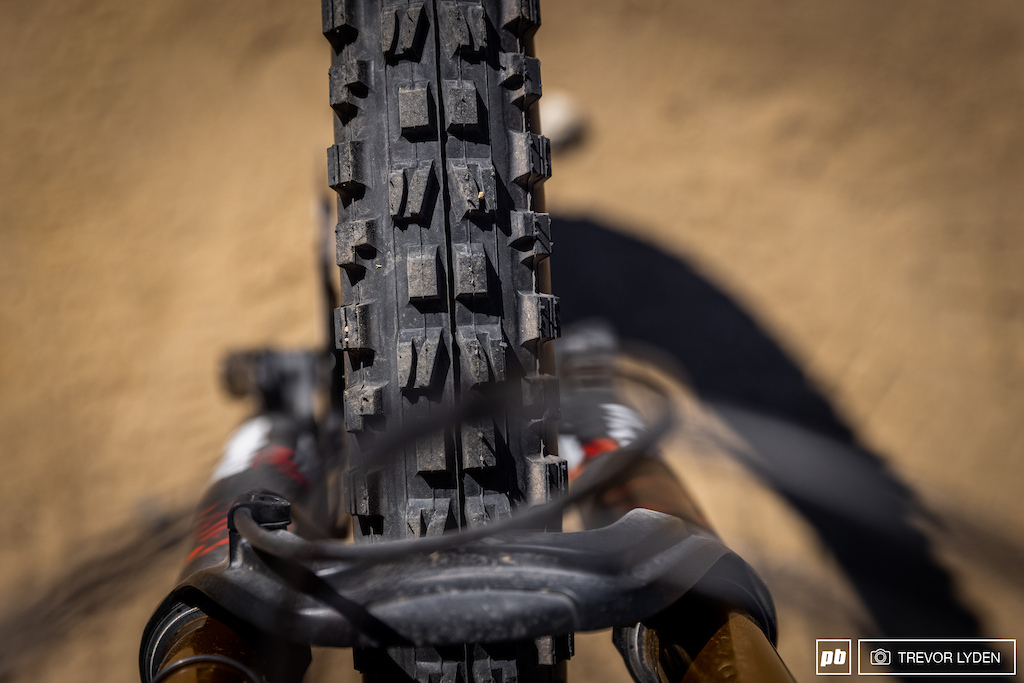 Maxxis DHF up front.