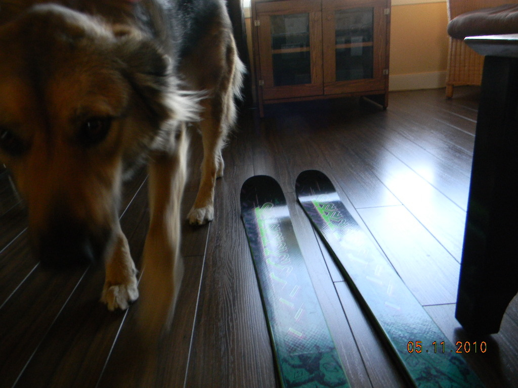 Lucy and my K2's.