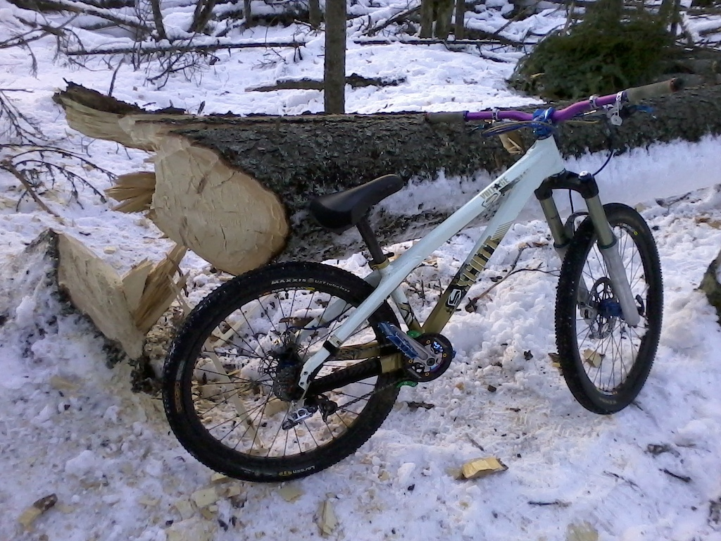 taking advantage of tree's up-rooted during fall storm season.  tree will get milled, profiled, and assembled into a berm retaining wall. Bike is for scale, 100% hand work