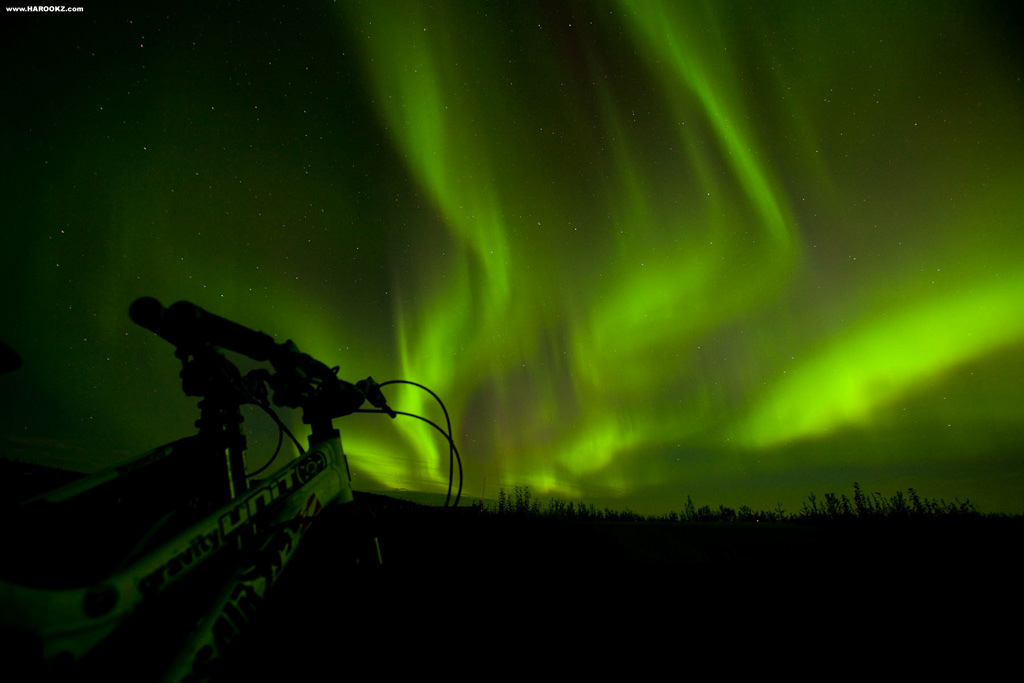 Aurora Borealis - Northern Lights - The most mind blowing natural light display I've ever seen. With all the talks of AK's magnificent light show, we had our camera gear ready with anticipation every clear night. It wasn't until the final evening on our drive to the airport that we were able to witness the sky spew a heavy dose of the green stuff in true AK form. The trip couldn't have ended on a better note! Even saw an Arctic fox on the side of the highway prior to the show.
