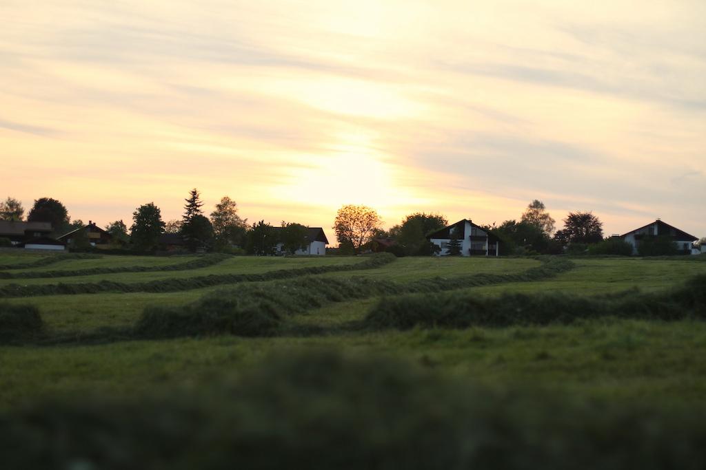 Landscape next to the BA-Trails