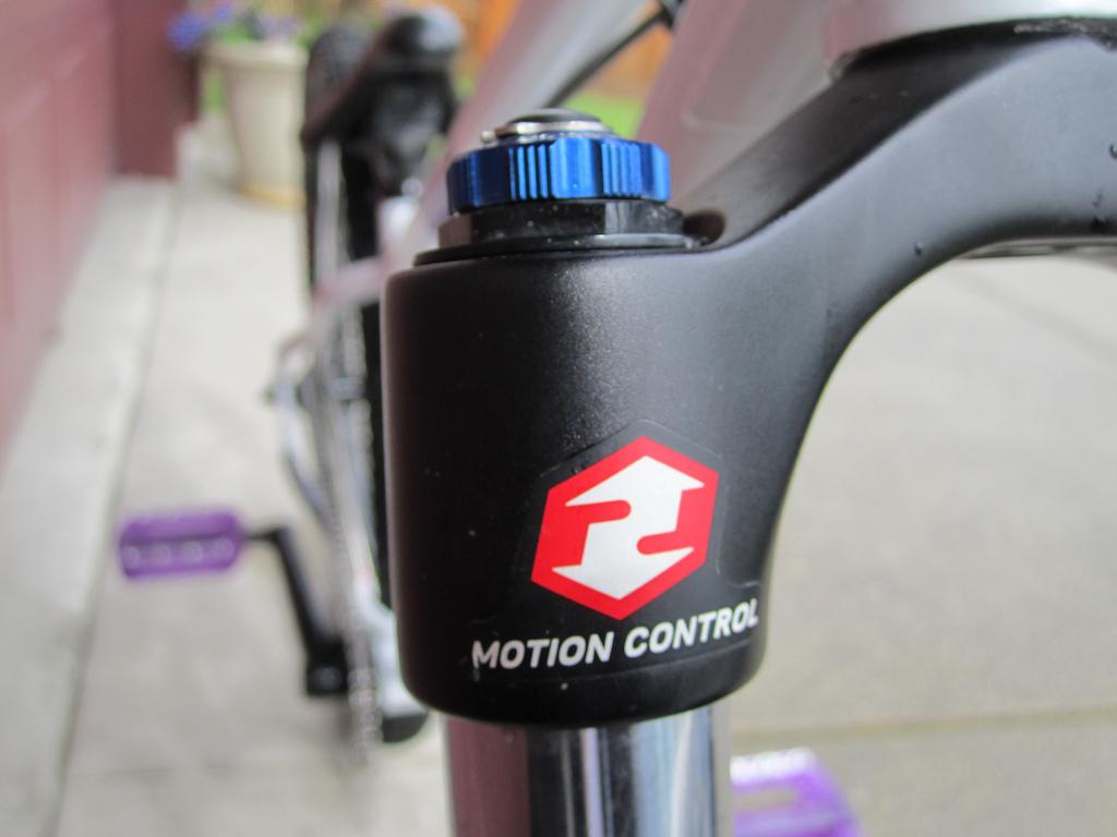 custom 2011 brodie heathen