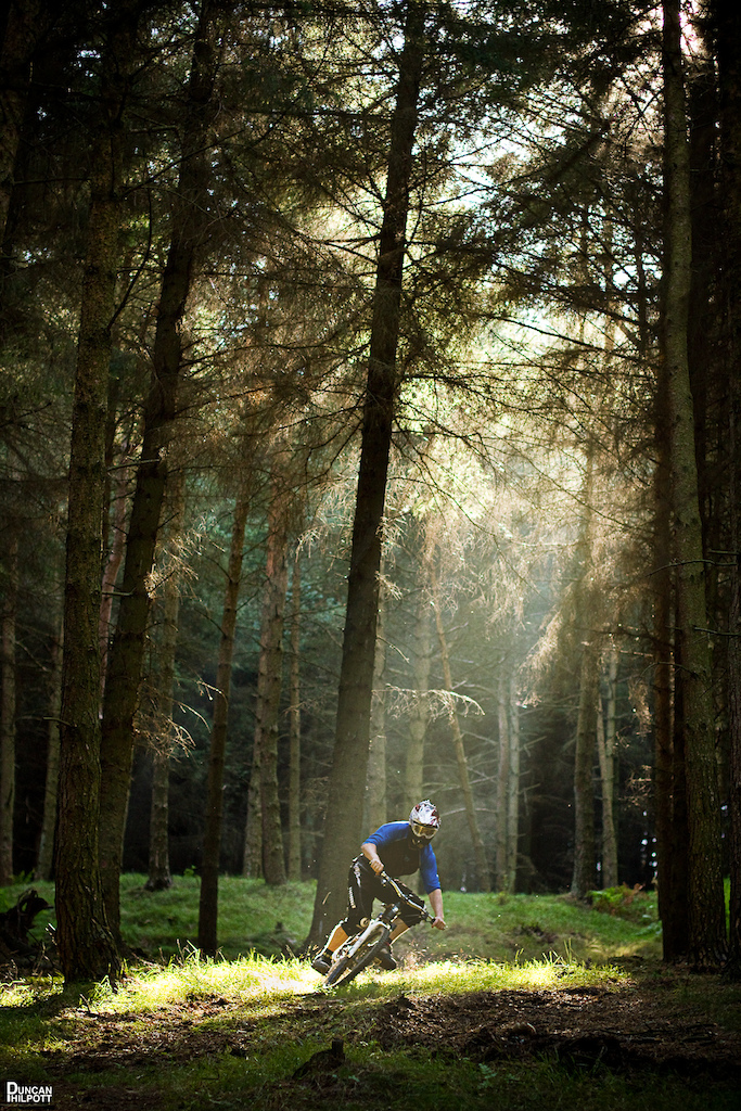 Ride the light! Patchy light in dense woods....