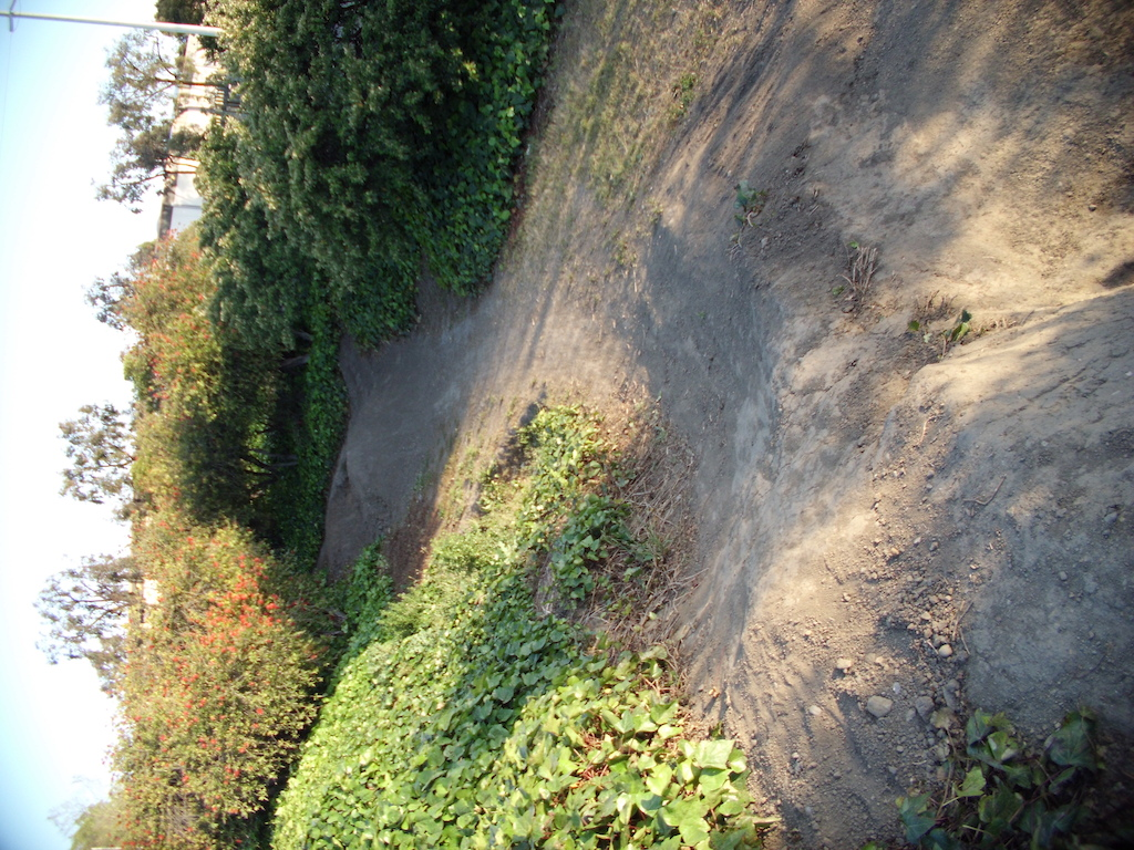 Landing of the quarter/hip.  goes into berm jump off the step-up/spine landing into the ivy.