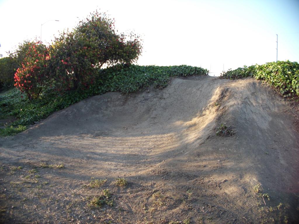 Dirt quarter/hip/superberm (berm is rough still).  Roughly 6' tall.