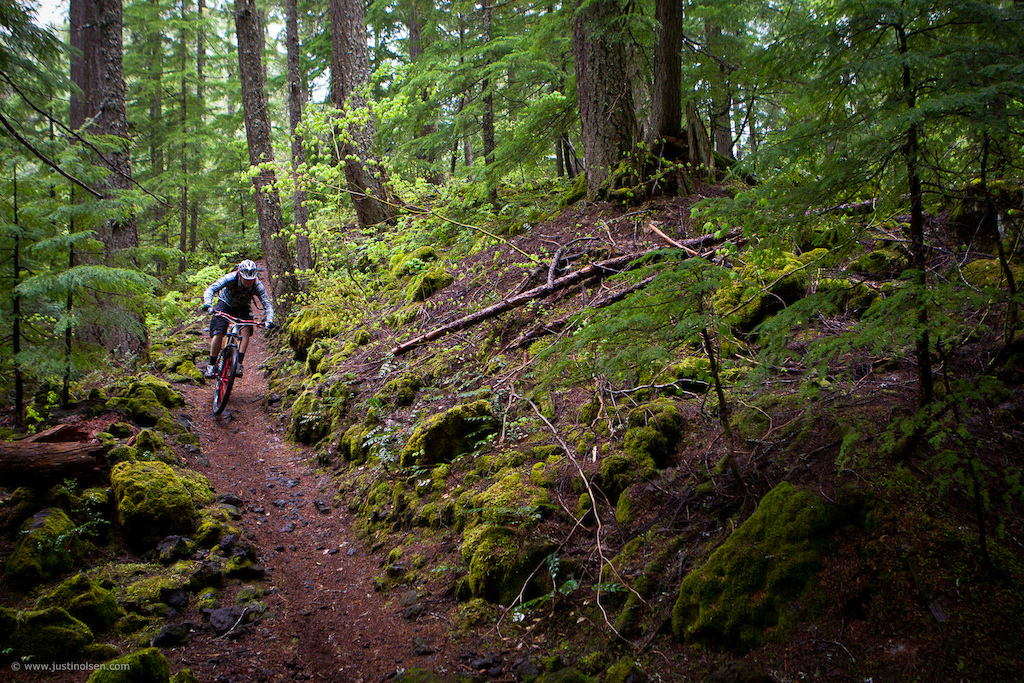 The Mckenzie river trail never disappoints. Imagine perfectly flowing single track a lush green forest and the sound of a raging river whispering through the trees. Now add the Diamondback prototype Mason 29 er to the picture and you may never come back... Billy Lewis gets lost in the moment.