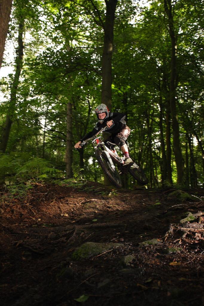 Speeding through the woods.