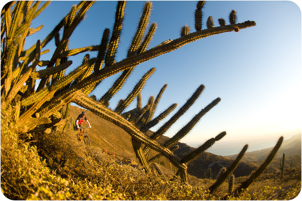 Leigh Donovan rides through the cactus garden on the trail down from the mesa at Punta San Carlos