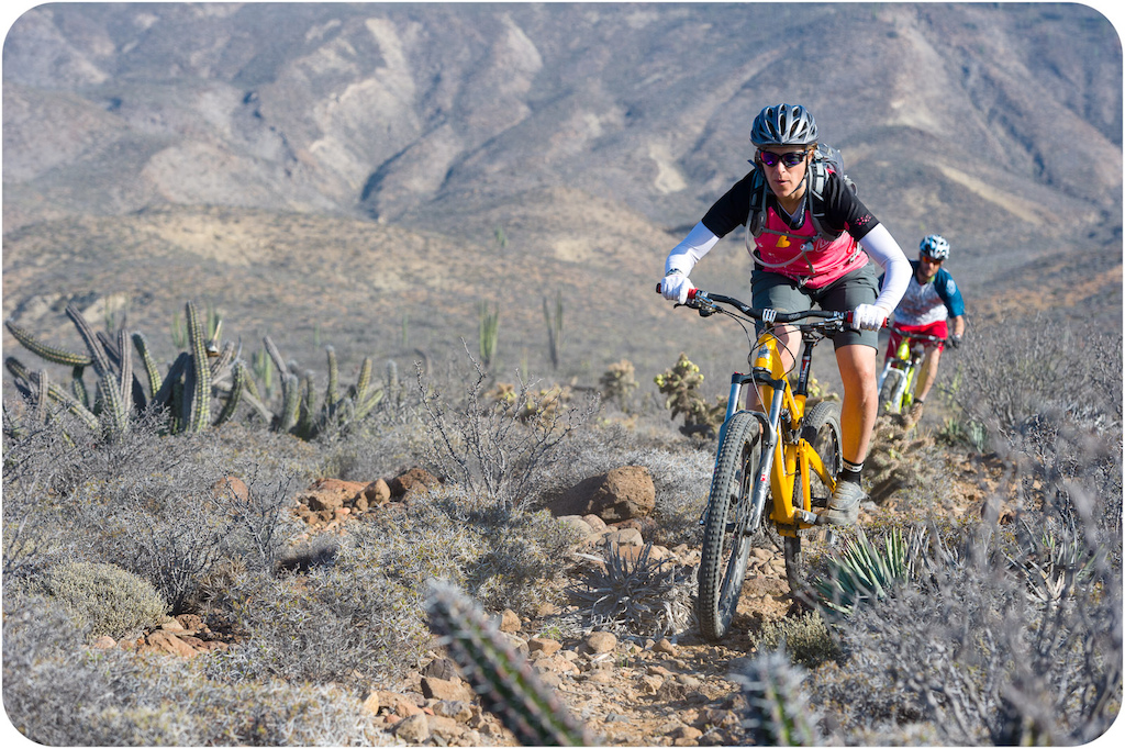 Leigh Donovan and Joe Bettitina ride through the cactus at Punta San Carlos.