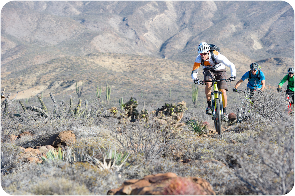 Brian Lopes Richie Schley and Joey Sanchez ride through the cactus at Punta San Carlos.