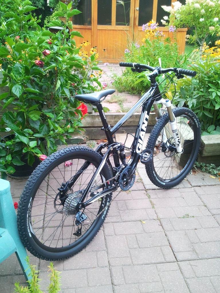 My new trail bike