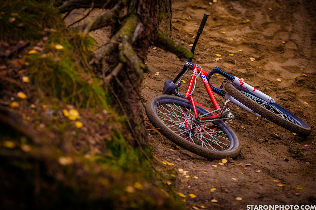 Good Autumn photosesh by Piotr Staron - staronphoto.com! The older of brothers show off his red devil rig and put some muscles into polish soil!