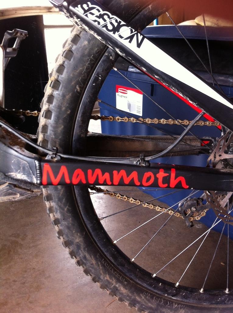 Mammoth swag